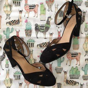 Currant Scones Heel